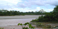 The Rio Aguarico in Ecuador on the far western side of the Amazon Basin. It is a large tributary of the Rio Napo, iteslf a tributary of the Amazon